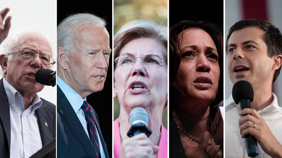 These Are the Democratic Candidates Qualified for the November Debate